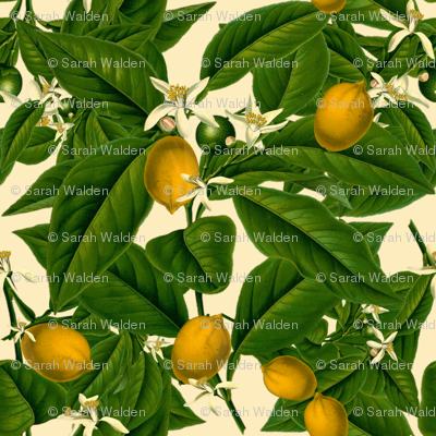 Lemon Botanical ~ Trianon Cream