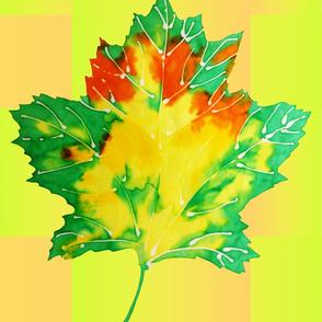 Baby Big Leaf 3