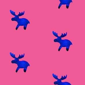 cestlaviv_moosePal_noliblue_pink