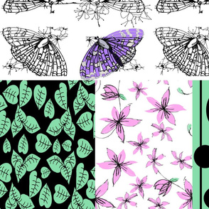butterfly_co-ord