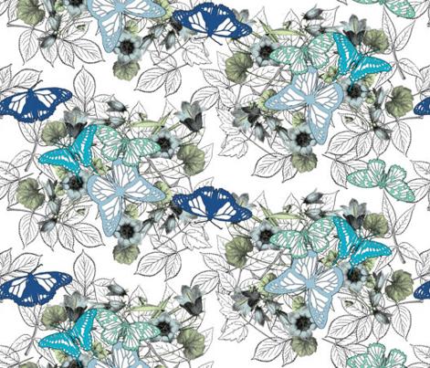 Butterfly Garden Coordinates