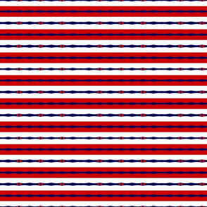 Proudly Patriotic 03