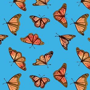 monarch003_pastel_sluitend_achter_blauw