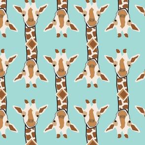 Smiling Giraffes