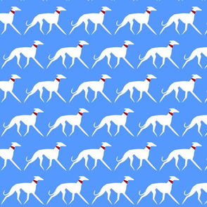 White sighthounds on blue