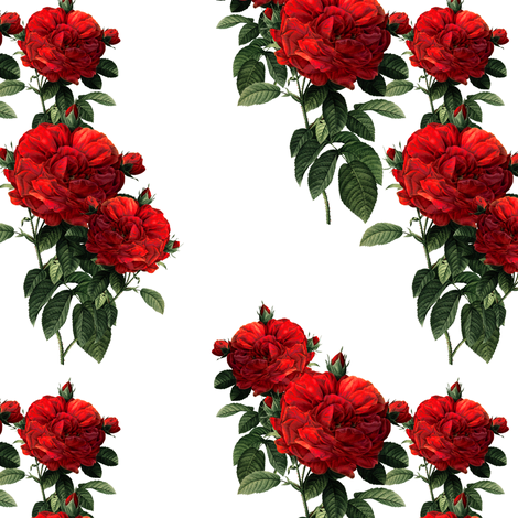Redoute Roses ~ Riot of Red Jumble ~ Small fabric by peacoquettedesigns on Spoonflower - custom fabric
