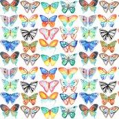 Rrrrrbutterflies1_shop_thumb