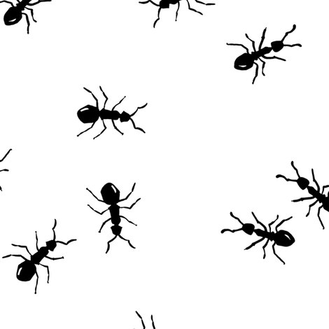 ants marching - large scale fabric by katherinecodega on Spoonflower - custom fabric