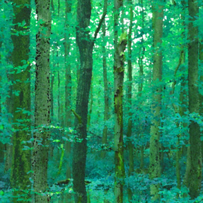 Forest For The Trees ~ Watercolor