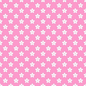 rosy floret