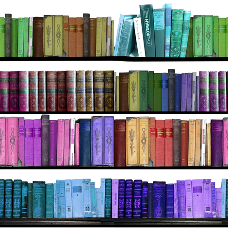 Rainbow Books Bookshelf Fabric By Inspirationz On Spoonflower