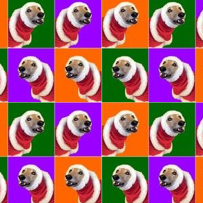 Greyhound Holidays Christmas