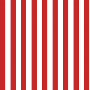 Red & White Candy Stripe large