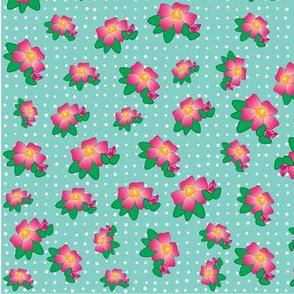eight_dozen_roses