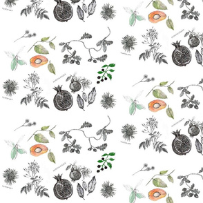 Spoonflower_Botanical