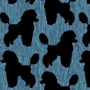 Ink Black Poodle with blue