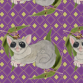 Sugar Glider in purple
