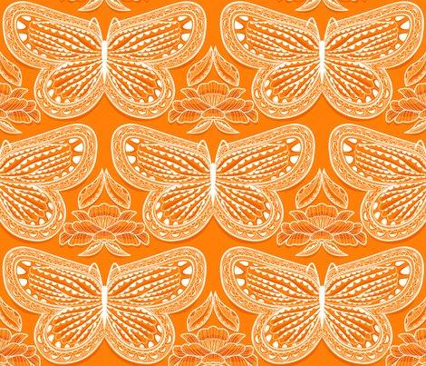 Butterfly_tonal_orange_88_shop_preview