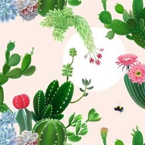Cactus Delight