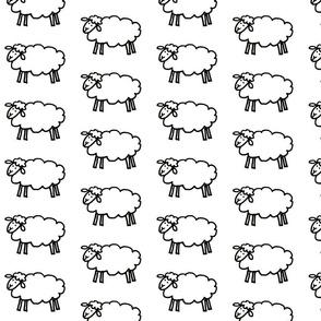 Sheep-White