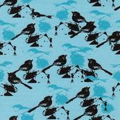 Birdy Kingdom