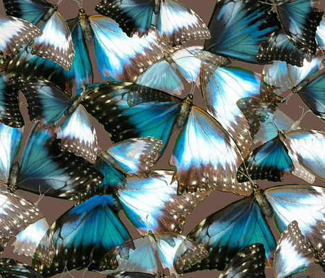 Turquoise Butterflies fabric by greenedevine on Spoonflower - custom fabric