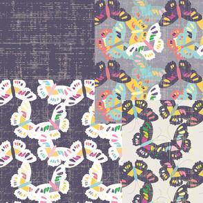 Butterflies - Coordinates 2015