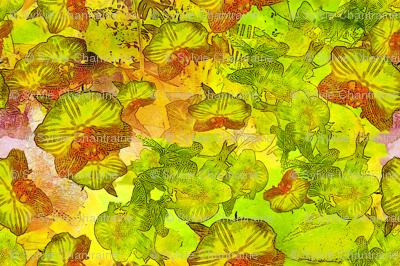 BUTTERFLIES EXOTIC JUNGLE ORCHID FLOWERS coordinates