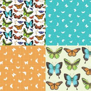 Butterflies Coordinate