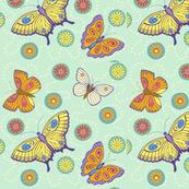 My_Butterfly_Garden-_allover