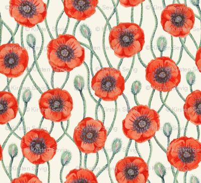 Poppies on Cream