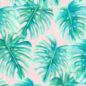 Paradise Palms Blush