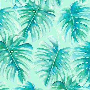 Paradise Palms Mint