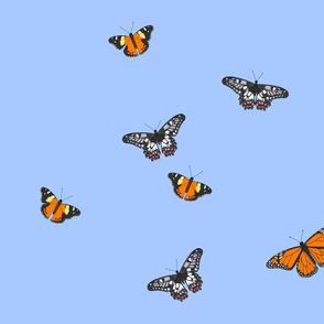 Butterfly Skies 2015