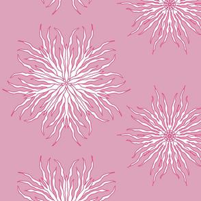 Kelp (blush)