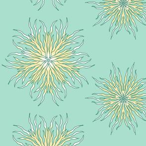 Kelp (mint flora)