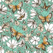Rbutterfly_focal_print_final081115_150-01_shop_thumb