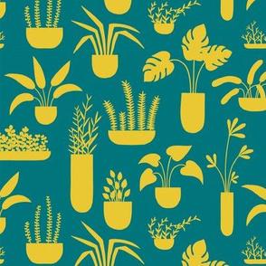 mustard vases