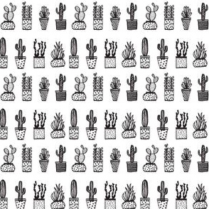 cactus // potted plants houseplants mini black and white plants cacti