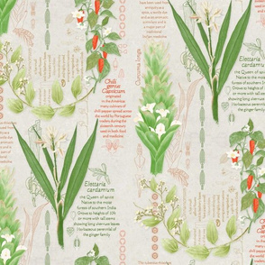 Spice Garden Study