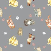 Rrandom_cats_on_grey_shop_thumb
