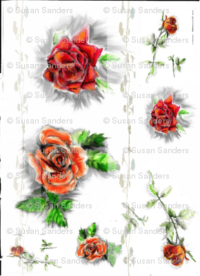 old_roses-ed
