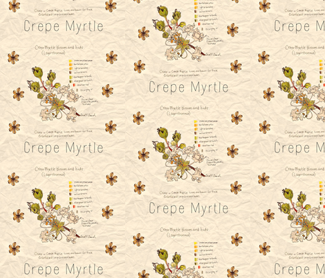 Crepe Myrtle Study fabric by ccreechstudio on Spoonflower - custom fabric