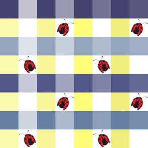 Ladybug Picnic Gingham