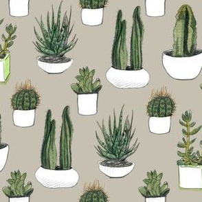 Watercolor Cacti & Succulents on Beige