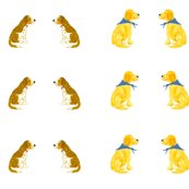 Rpaired_springers_and_golden_retrievers_shop_thumb