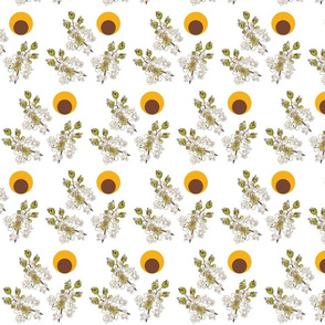 Crepe Myrtle Orange Circle