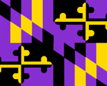 Rmaryland-flag_ravens_1_thumb