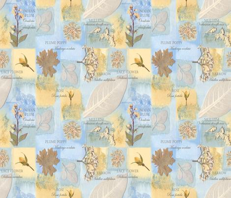 Botanical Collectors Garden small fabric by mypetalpress on Spoonflower - custom fabric