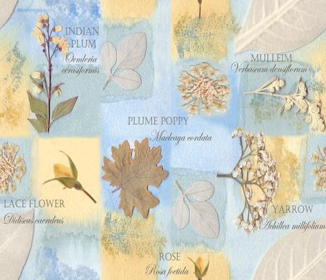 Botanical Collector's Garden fabric by mypetalpress on Spoonflower - custom fabric